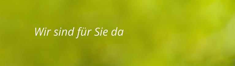 Grüne Fläche mit Text